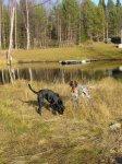 Ditte och Stella nedanför Granströms - <p><em>Foto: Ingela Nyman</em></p>
