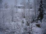 Vintern är här - <p>19/10 Erics stuga i vinterskrud</p> <p><em>Foto: Marina Nyman</em></p>